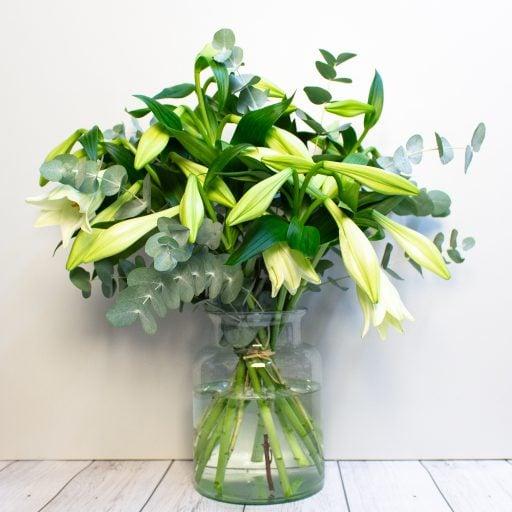 Longi Lilies – Pure Love
